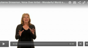 Wonderful World of Voice Overs